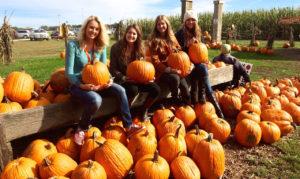 jeffys-pumpkin-patch-1